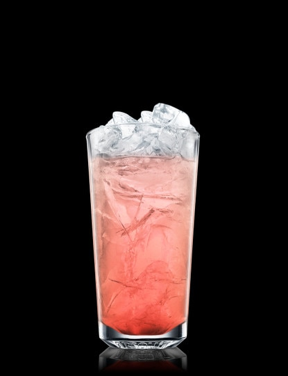 Absolut Pomegranate Fizz